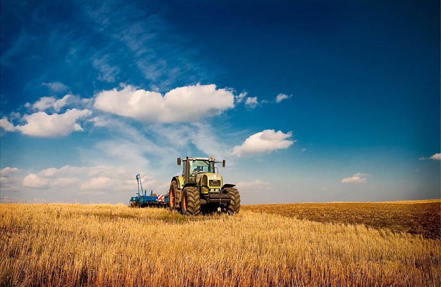 Перспективы развития сельского хозяйства в мире
