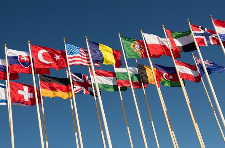 Влияние вступления России во всемирную торговую организацию на продовольственную безопасность